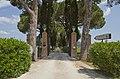 L'andana Tenuta la Badiola, Castiglione della Pescaia, Grosseto, Tuscany, Italy - panoramio.jpg