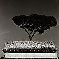 LA2 Roma di Augusto De Luca.jpg
