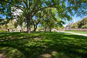 Louisiana Tech University - The Quadrangle (The Quad)