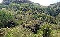 La Roca - panoramio (4).jpg