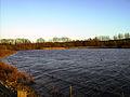 Lake (2294450964).jpg