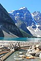 Lake Moraine with logs (9309191805).jpg