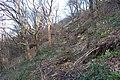Landslide Reins Wood - geograph.org.uk - 675082.jpg