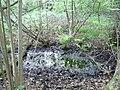 Langenfeld Nähe Haus Graven 0021.jpg