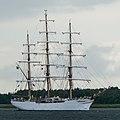 Langerak (Aalborg Kommune).TSR 2019.Cisne Branco.2.ajb.jpg