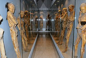 Mummies of Guanajuato - Several mummies, 2008