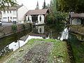 Le Bugue ruisseau Ladouch (4).JPG