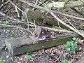 Leftovers, Huntington Branch Line, Pillaton - geograph.org.uk - 398218.jpg