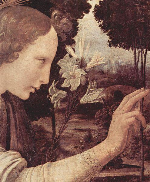 http://upload.wikimedia.org/wikipedia/commons/thumb/0/01/Leonardo_da_Vinci_060.jpg/495px-Leonardo_da_Vinci_060.jpg