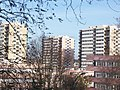 Les-Larris Fontenay-sous-bois.JPG