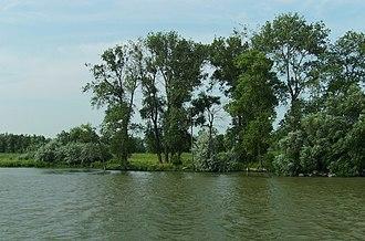 Letea Forest - Image: Letea 0 cropped