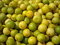 Limes Horticulture Agriculture product of India.jpg