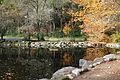 Lithia Park - Ashland, Oregon - DSC02743.JPG