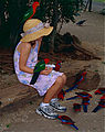 Little Girl feeding King Parrots (Alisterus scapularis) and Crimson Rosellas (Platycercus elegans) (10019343145).jpg
