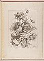 Livre de Toutes Sortes De Fleurs D'apres Nature MET DP210743.jpg