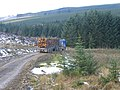 Log removal from Kielder Forest near High Long House - geograph.org.uk - 1200367.jpg