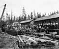 Loggers at railroad logging camp 6, Puget Sound Mill and Timber Company, possibly at Majestic, ca 1922 (KINSEY 1275).jpeg