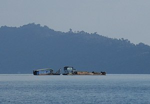 Deforestation in Laos - A boat carrying logs on Nam Ngum lake, 2011.