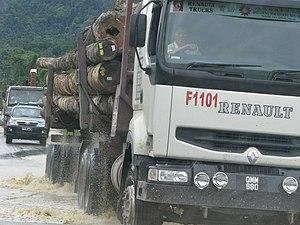Deforestation in Borneo - A logging truck in Sarawak, Borneo.