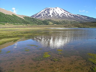 Lonquimay (volcano) mountain in Malleco Province Chile