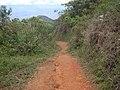 Los guaduales Balboa Cauca - panoramio (18).jpg