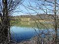 Louyre Cendrieux étang Moulin Durestal.JPG