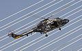 Lynx (12757565303).jpg