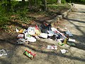 Müll Hannover.JPG