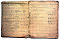 Major-General Sir Leonard Rogers' clinical notebook. Wellcome L0022168.jpg