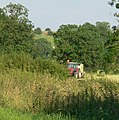 Making Hay - geograph.org.uk - 501141.jpg