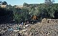 Marokko1982-067 hg.jpg