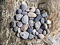 Marshall Point Rock Collection.jpg