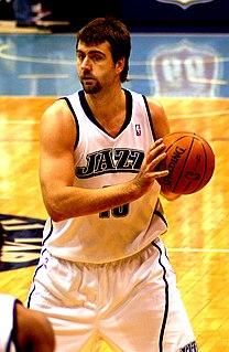 Mehmet Okur Turkish basketball player (born 1979)