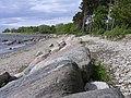 Merivälja rand - panoramio - Aulo Aasmaa (1).jpg