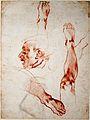 Michelangelo - Male Head in Profile, Studies of Limbs.jpg