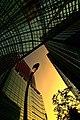 Midtown Tokyo in Akasaka - panoramio.jpg
