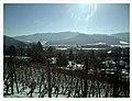 Minus 10 Grad Celsius Glottertal Germany - Magic Rhine Valley Photography - panoramio (10).jpg
