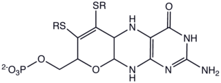 Molybdopterin chemical compound