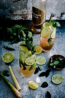Mojito Traditional Cuban highball cocktail