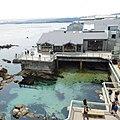 Monterey 602 - panoramio.jpg