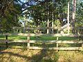 Monticello FL Lyndhurst Plantation01.jpg