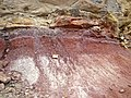 Morrison Formation (Upper Jurassic; Dinosaur Ridge, west of Denver, Colorado, USA) 2 (22021405308).jpg