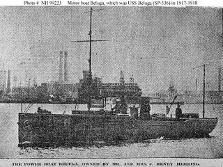 USS <i>Beluga</i> (SP-536)