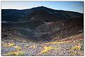 Mount Etna volcano, Silvestri Craters, wild vegetation.jpg