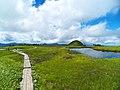 Mount Naeba (7817107312).jpg