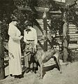 "Mrs. Harris and her Daughter, Faith - and ""Busco"".jpg"