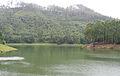 Munnar - views from Munnar (34).jpg