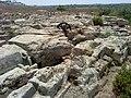 Nahal-taninim-reserve-097.jpg