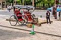 Nara Park, Nara, Japan (49006132596).jpg