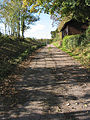Narrow road to St. Michael's Church, Blaisdon - geograph.org.uk - 599217.jpg